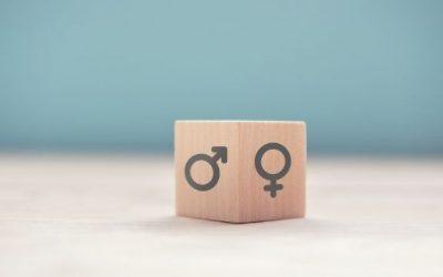 Planes de Igualdad, Real Decreto-Ley 6/2019